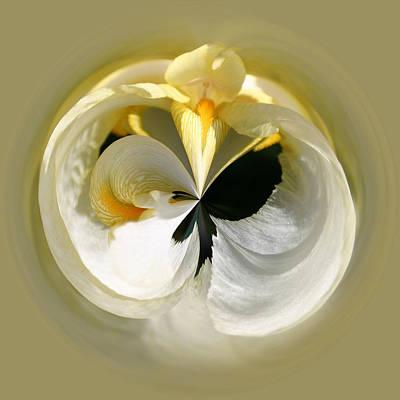 Yellow Iris 101 Poster