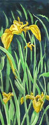 Yellow Iris Poster by Richard De Wolfe
