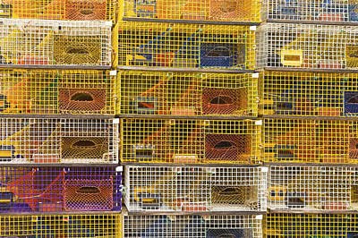 Yellow Lobster Traps In Maine Poster