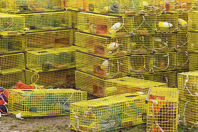 Yellow Lobster Traps In Maine Poster by Keith Webber Jr