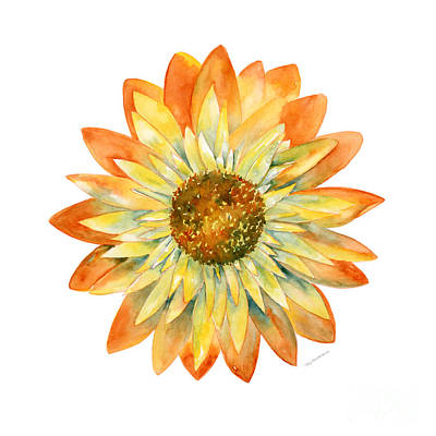 Yellow Orange Daisy Poster by Amy Kirkpatrick