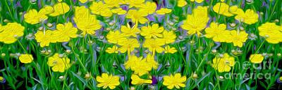 Yellow Wild Flowers Poster by Jon Neidert
