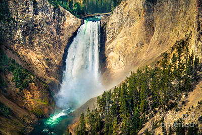Yellowstone Lower Waterfalls Poster by Robert Bales