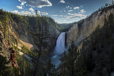 Yellowstone River Lower Falls Poster by Michael J Bauer