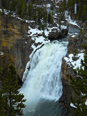 Poster featuring the photograph Yellowstone Upper Falls In Spring by Michele Myers