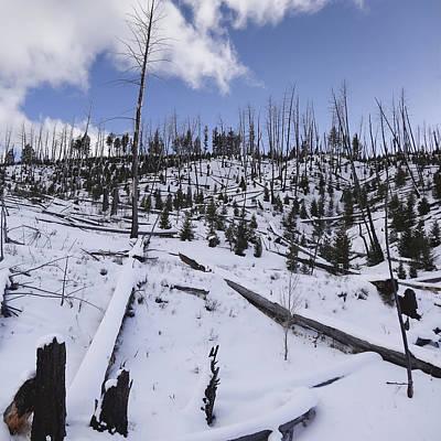 Yellowstone Winter Poster