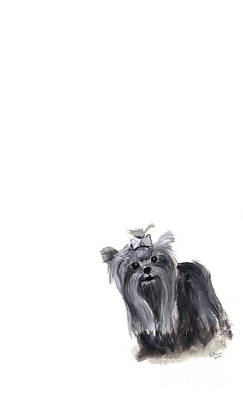 Yorkshire Terrier Poster by Barbara Marcus