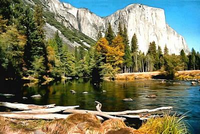 Half Dome Yosemite National Park Poster by Barbara Snyder