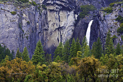 Yosemite Water Fall Poster