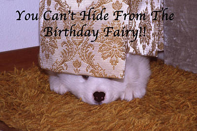 You Can't Hide Birthday Card Poster