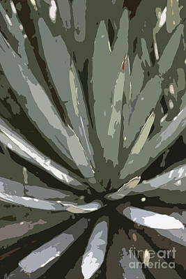 Yucca Abstract Poster by Christiane Schulze Art And Photography