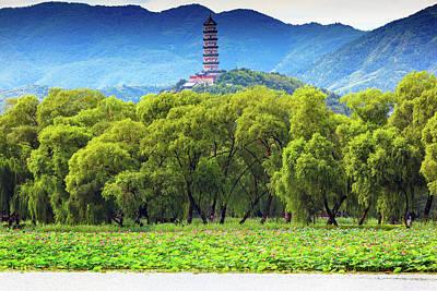 Yue Feng Pagoda Pink Lotus Pads Garden Poster