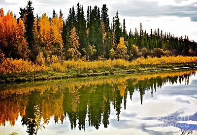Yukon Autumn Poster