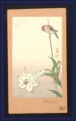 Yuri Ni Shokin, Small Bird On Lily Plant Poster