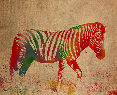 Zebra Animal Watercolor Portrait On Worn Canvas Poster