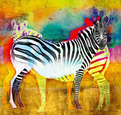 Zebra Colors Of Africa Poster