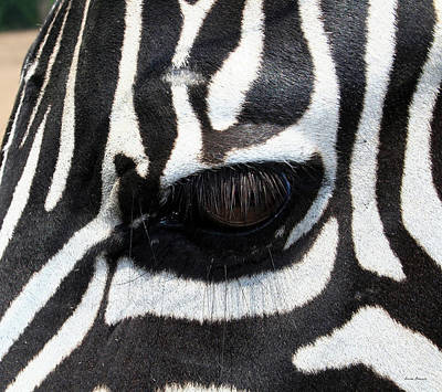 Zebra Eye Poster by Linda Sannuti