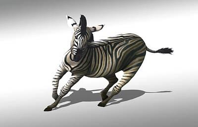Zebra Galloping Poster
