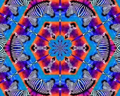 Zebra Kaleidoscope Poster by Elizabeth Budd