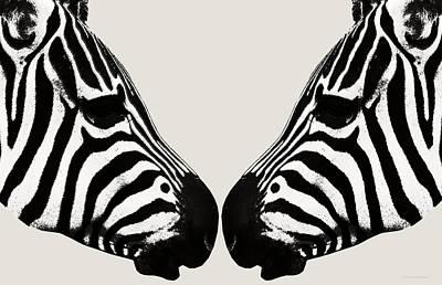 Zebra Love Poster