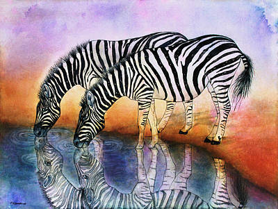 Zebra Reflections Poster