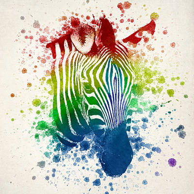 Zebra Splash Poster by Aged Pixel