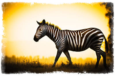 Zebra Sunset Poster by Mike Gaudaur