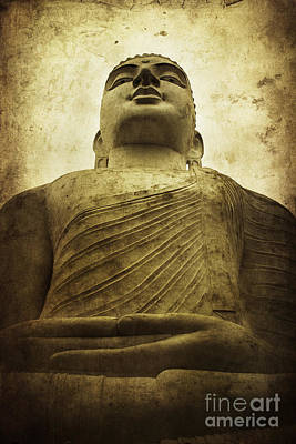 Zen Poster by Andrew Paranavitana