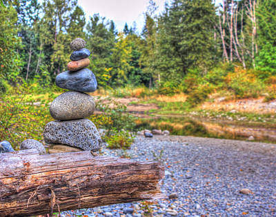 Poster featuring the photograph Zen Balanced Stones On A Tree by Eti Reid
