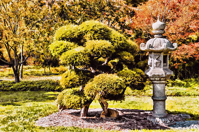 Poster featuring the photograph Zen Garden by Anthony Citro