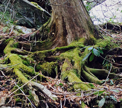 Zielony Moss Poster