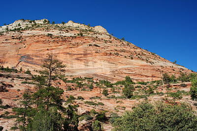 Poster featuring the photograph Zion National Park by Robert  Moss