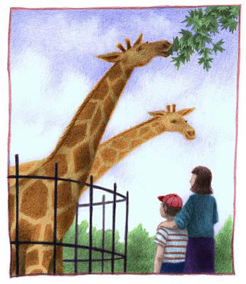 Zoo Giraffe Poster by Steve Dininno