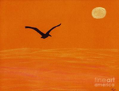 Pelican Silhouette Sunset Poster by D Hackett