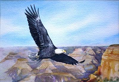 Poster featuring the painting  Eagle   American Bald Eagle by Sandra Phryce-Jones