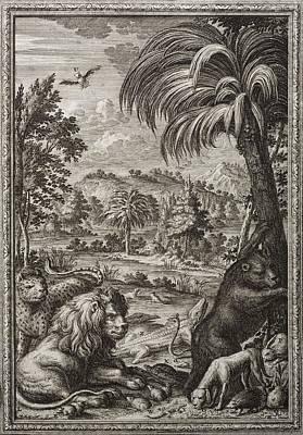 1731 Johann Scheuchzer Creation 6th Day Poster by Paul D Stewart