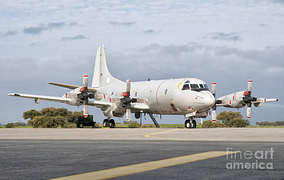 A Portuguese Air Force P-3c Cup Orion Poster