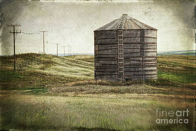 Abandoned Wood Grain Storage Bin In Saskatchewan Poster by Sandra Cunningham
