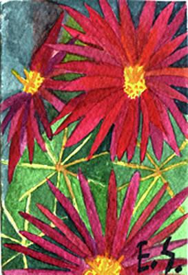 Arizona Pincushion Poster