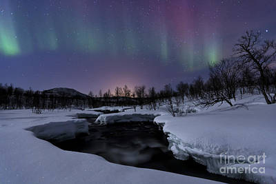 Aurora Borealis Over Blafjellelva River Poster by Arild Heitmann