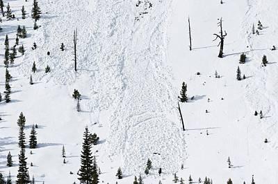 Avalanche Poster by Jeremy Walker