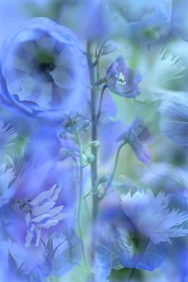 Blue Delphinium Poster by Bonnie Bruno