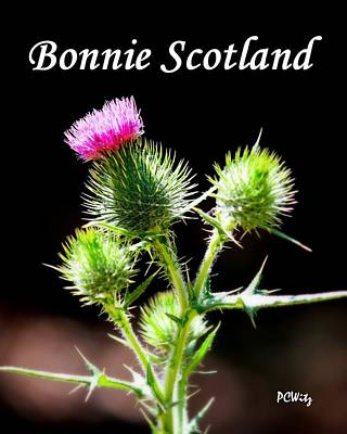 Poster featuring the photograph Bonnie Scotland by Patrick Witz