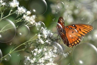 Bubble Fly Poster by Steven Richardson