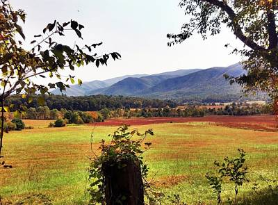 Poster featuring the photograph Cades Cove by Janice Spivey