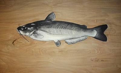 Catfish Poster by Robert Cunningham