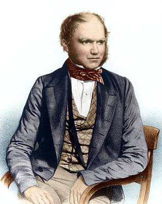 Charles Darwin, British Naturalist Poster by Sheila Terry
