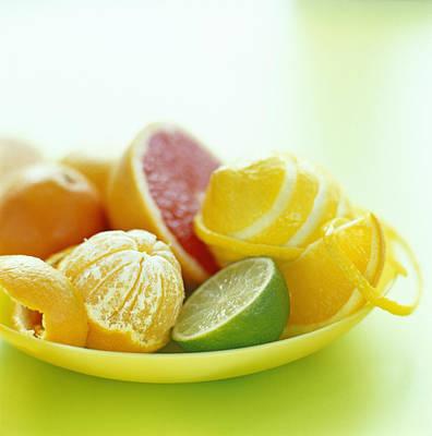 Citrus Fruits Poster