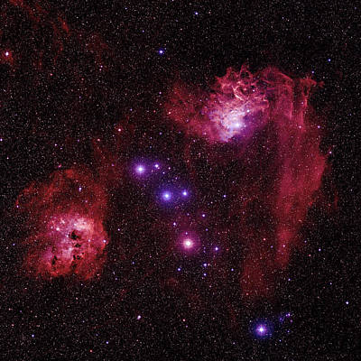 Emission Nebulae Poster by Celestial Image Co.