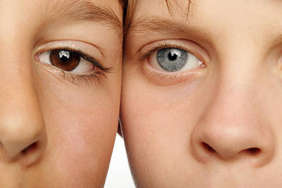 Eye Colour Poster by Mauro Fermariello